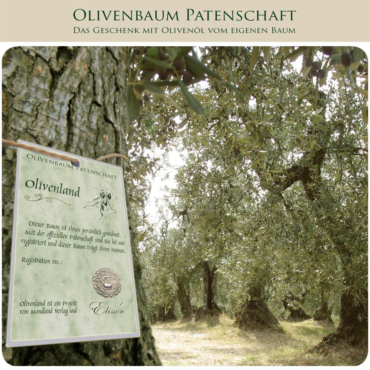 olivenland_gr1_8-1